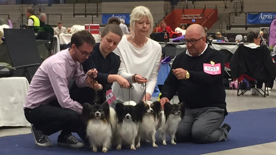 Best Breeders Group - Kennel Caratoots
